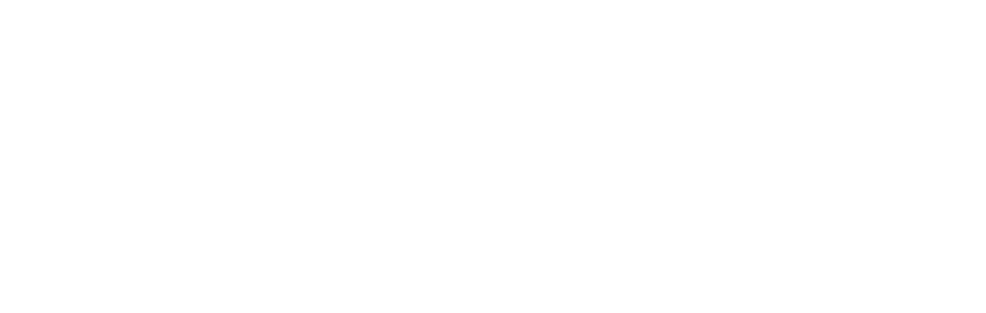 Taylor Raine Boudoir Logo